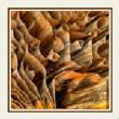 3DFractals/Honeycomb.jpg